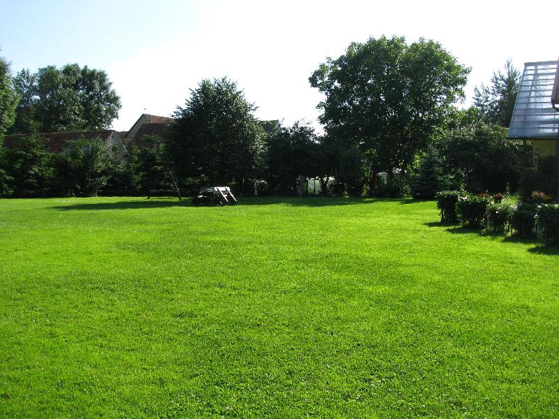 Trawnik przy jeziorze